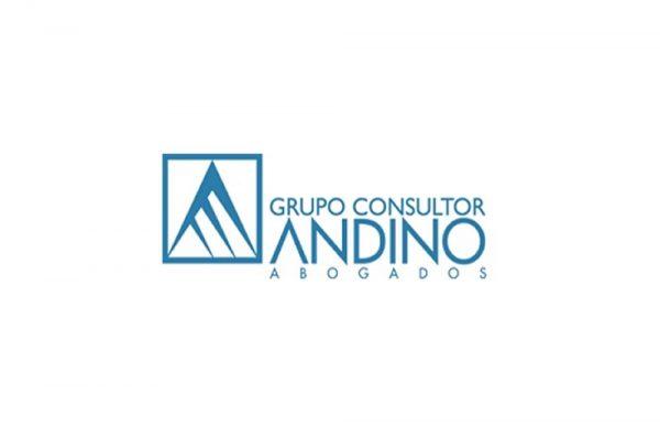 GRUPO CONSULTOR ANDINO S.A.